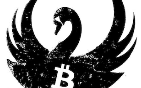 加密市场的黑天鹅:为什么BTC并不适合新手投资者?