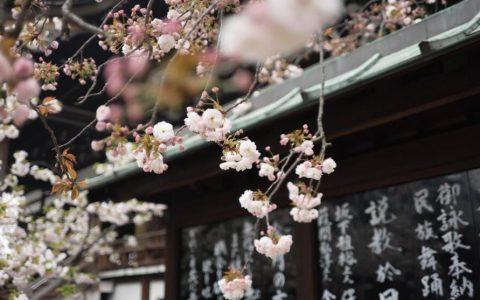 日本出台新规:限制加密货币保证金交易杠杆率