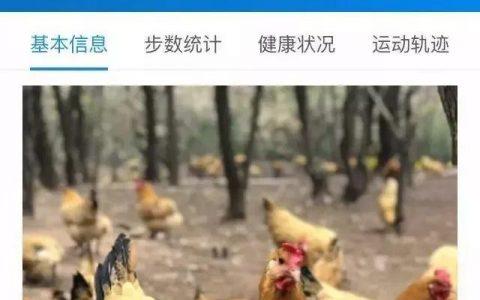 """除了養雞,""""區塊鏈+農業""""還能幹什麼?"""