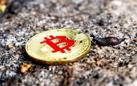 新加坡加密货币监管法生效,全球公司均可申请牌照