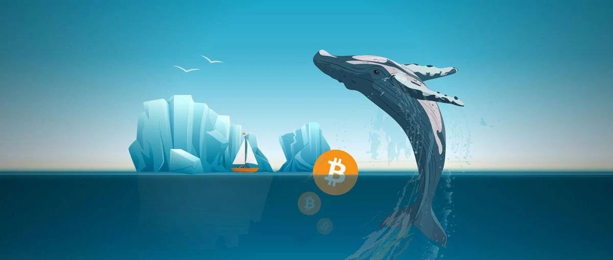 """传言比特币""""巨鲸""""能控制市场,那么又是谁在掌控""""巨鲸""""?"""