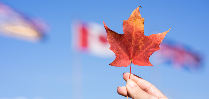 加拿大银行:央行数字货币存储风险