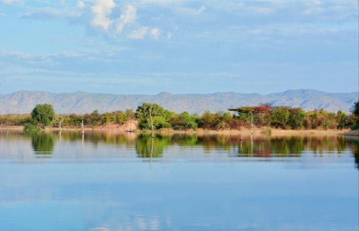 赞比亚最大的土地权项目,获得美第奇公司的区块链支持